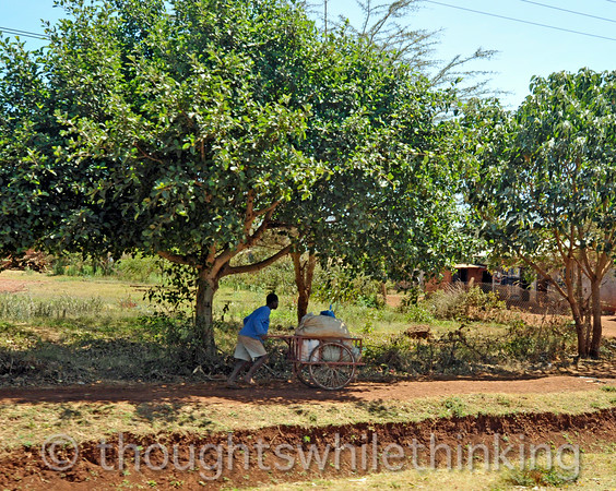 We saw numerous young men with their carts for hire in most of the villages we passed thru on our way to the airstrip.