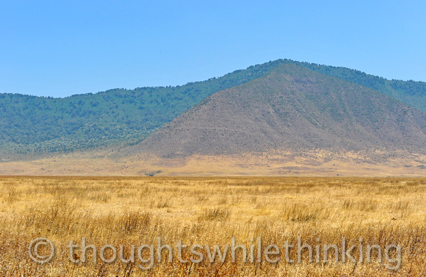 typical grassland in the Crater, generally at an altitude of about 5,900 feet, and the steep crater rim, seen here, about 2,000 feet higher