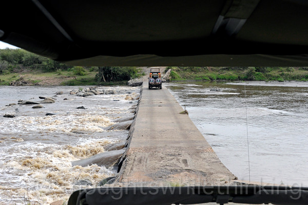Now it is our turn to cross the Mara River from the south side to the north side.
