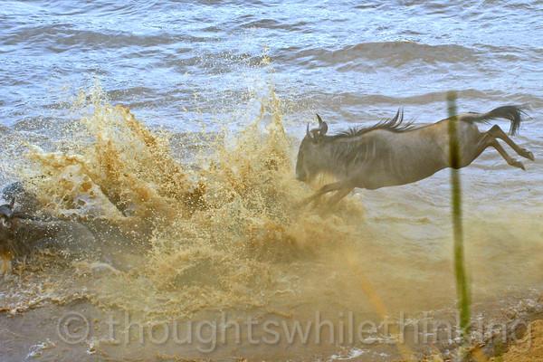 Here's their splash-down.