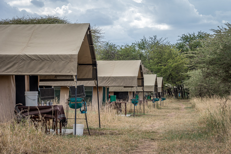 Tented camps #6 - #9