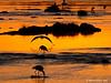 Siluetas en el río Mara