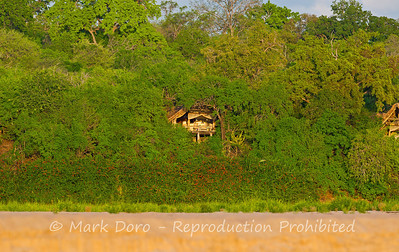 Sand River Camp, Rufiji River, Selous, Tanzania