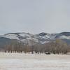 Winter Landscape in New Mexico