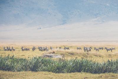 Tanzania-North-110