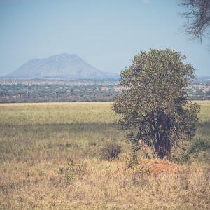 Tanzania-North-10