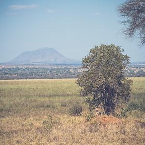 Tanzania-North-53