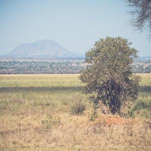 Tanzania-North-102