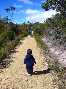 Tasman path
