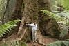 Is this a big tree or a midget Grandpa?
