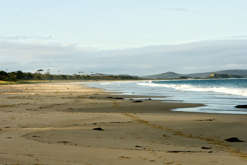 Neck Beach near sunset.  In a full screen view of this photo, two horseback riders may be seen far up the beach.