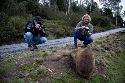 I'll stand over here while Winston and Matt attempt to photograph the wily wombat in its native habitat