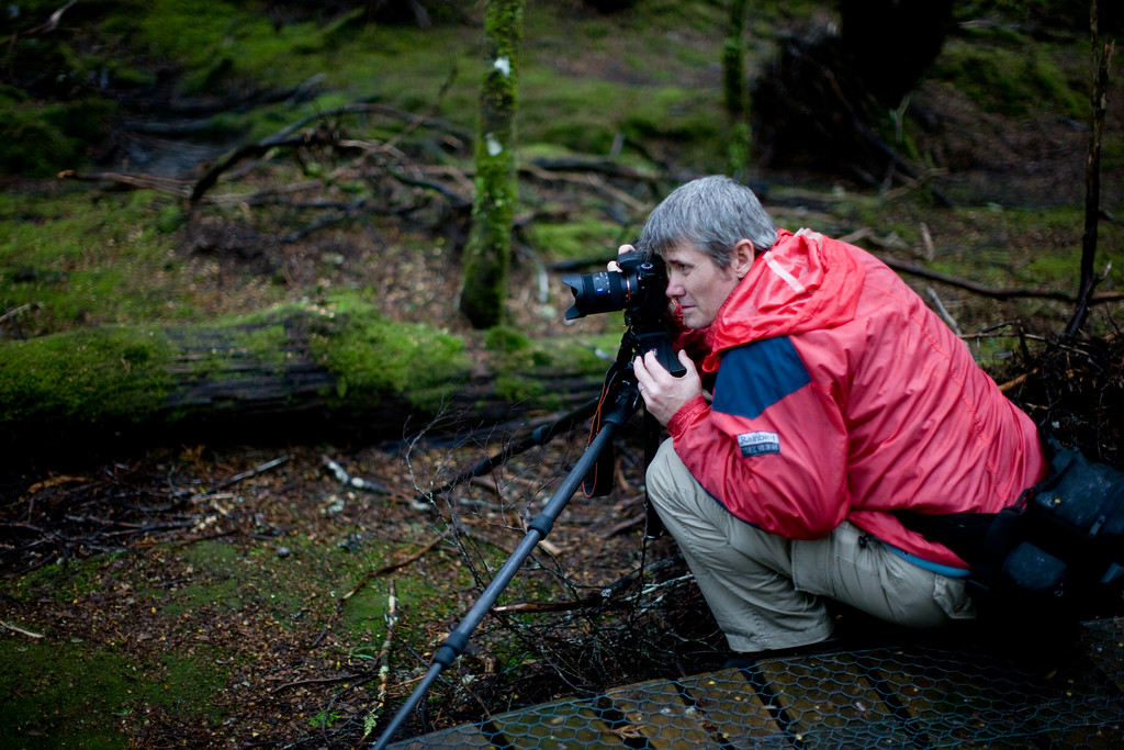 Philip Andrews is a documentary photojournalist but he's digging the wilderness
