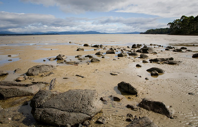 Bruny Island at low tide