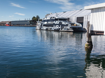 Tasmania_2015_010