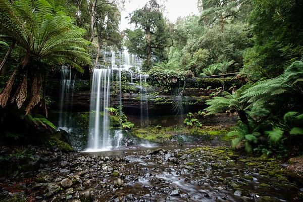 20190629_Tasmania-8003