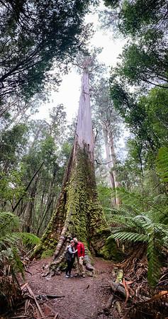 20190629_Tasmania-4928-2