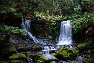 20190629_Tasmania-8102