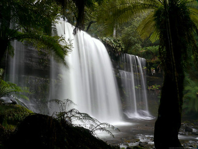 Russell Falls in high water, Mount Field NP.