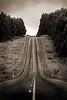 The road into Cradle Mountain, Tasmania.