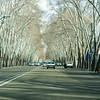 THR06-Tehran City Limits-043