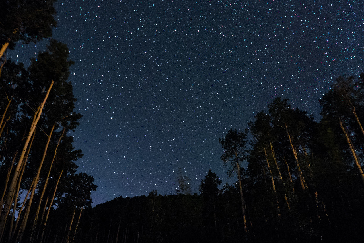 Northern view.  Big Dipper is in the lower left third.
