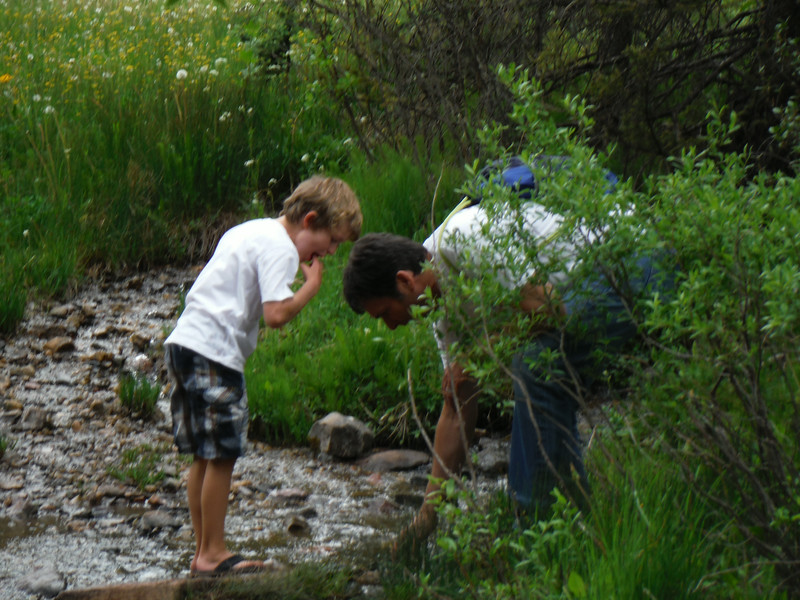 Todd and Slater doing a little stream improvement project.