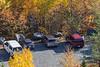 View towards parking lot. Denise Lantz by car