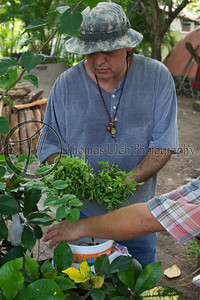 Aleph preparing the herbs.