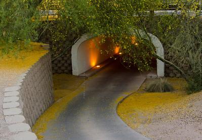 Tunnel near Rustler's Roost 7279