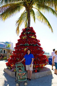 Christmassy coconut tree at Fort Myers Beach