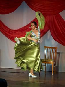 Flamenco show at Hotel Isabel Familily, nr 24