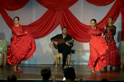Flamenco show at Hotel Isabel Familily, nr 11