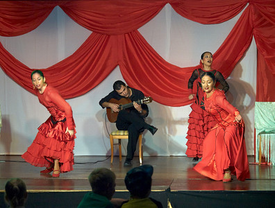 Flamenco show at Hotel Isabel Familily, nr 17