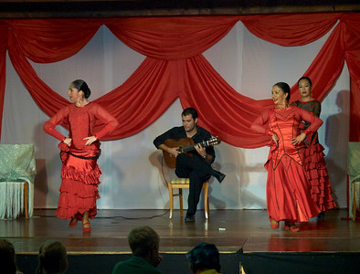Flamenco show at Hotel Isabel Familily, nr 13