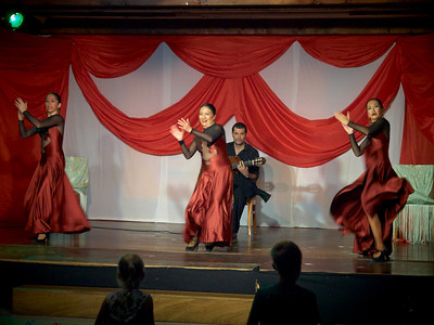 Flamenco show at Hotel Isabel Familily, nr 45