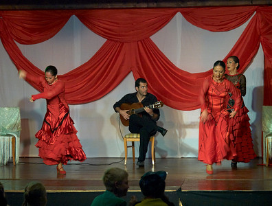 Flamenco show at Hotel Isabel Familily, nr 14