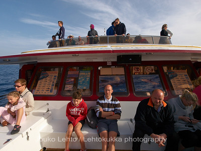 Valasretki - Whale trip