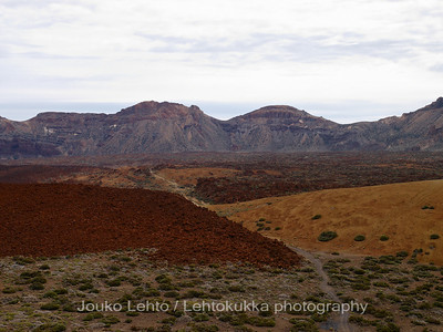 Teide National Park nr 066