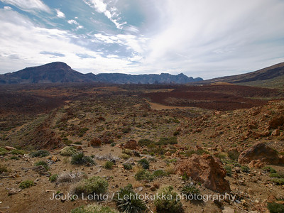 Teide National Park nr 085
