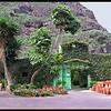 Garden centre on north west coast of Tenerife