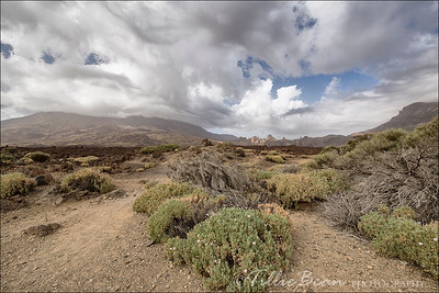 Mount Teide in the Clouds