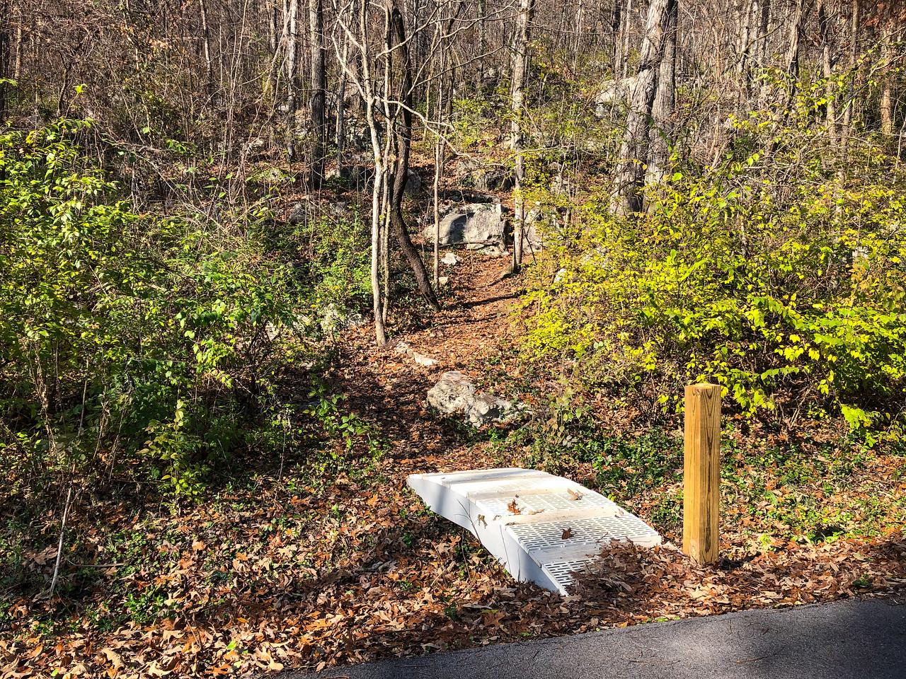 Small plastic bridge crossing into a path.
