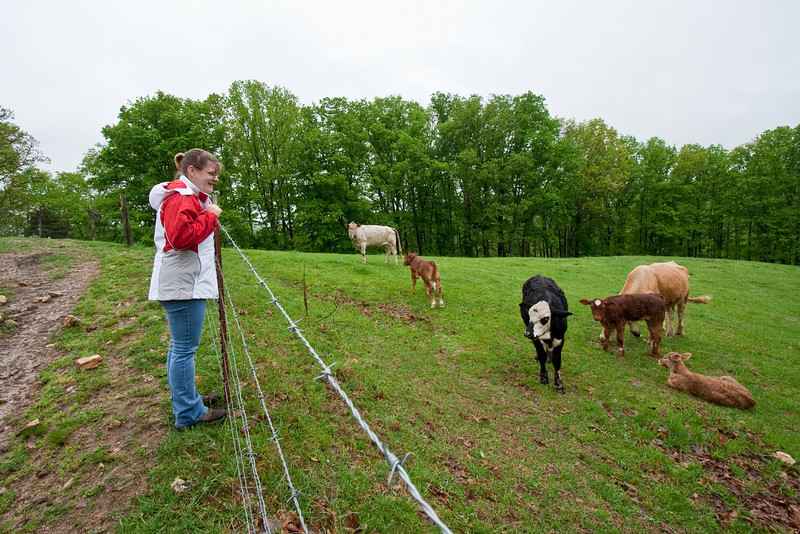 Jennifer checking out the cows on Willie's farm