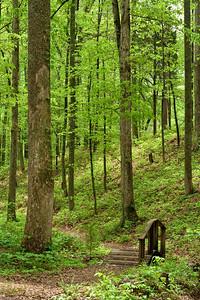 7088 UT Arboretum