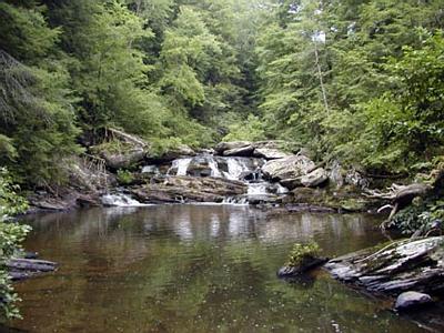 Coker Creek Falls, TN
