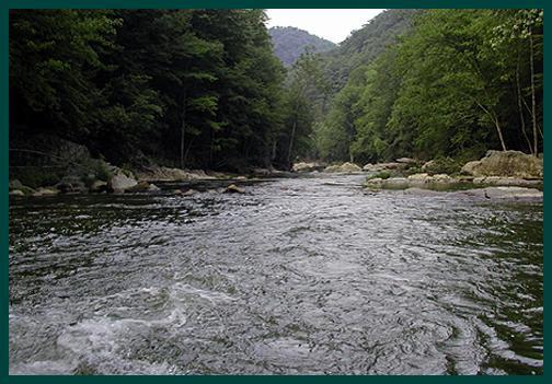 The Elk River, TN