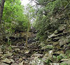 Looking back UP the Cable Trail which leads to the base of Rockhouse and Cane Creek Falls at Fall Creek Falls State Park.<br /> TN
