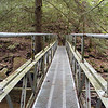 First metal bridge Piney River Trail <br /> TN 9/13/08