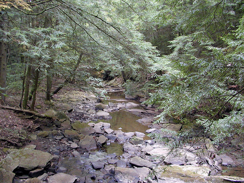 Low Water on Piney River Trail 9/13/08